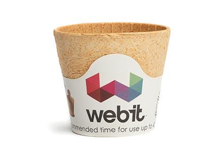 Webit Festival